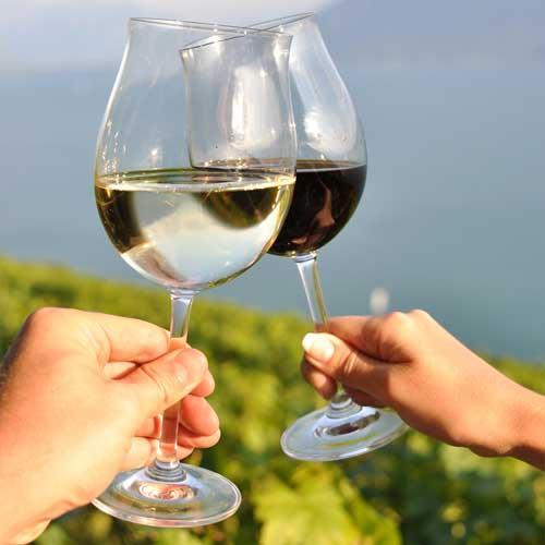 http://calcuttawineclub.com/image/summer-wine-00.jpg